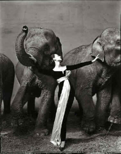 Richard Avedon, 'Dovima with Elephants, Evening Dress by Dior, Cirque d'Hiver, Paris', 1955