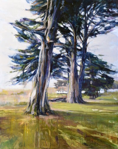 Kanna Aoki, 'Cypress', 2020