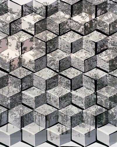 Hannah Whitaker, 'Arctic Landscape (Trees)', 2014
