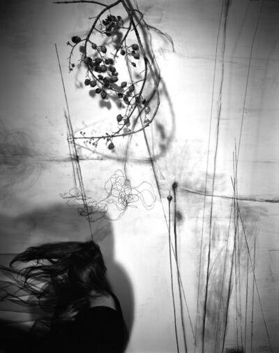 Lauren Semivan, 'Branches', 2011