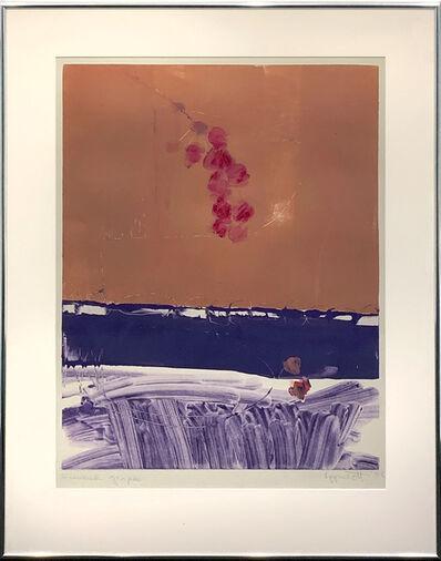 Janet Lippincott, 'Summer Grapes', 1986