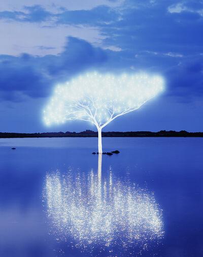 Lee Jeonglok, 'Tree of Life 5-4-9', 2013