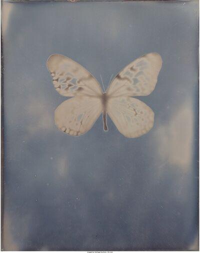 Adam Fuss, 'Untitled', 2009