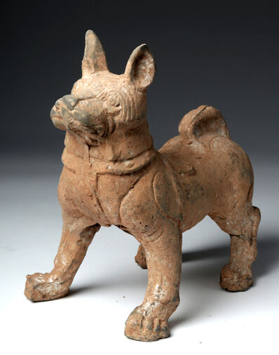 Han Dynasty, 'Large Chinese Han Dynasty Terracotta Dog w/TL', 206 BCE-220