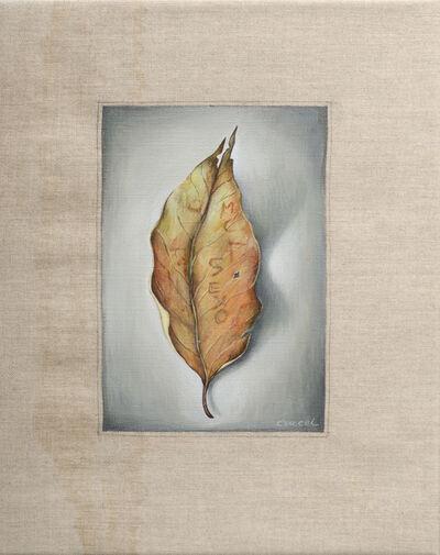 Manuel Cancel, 'Leaf #1'