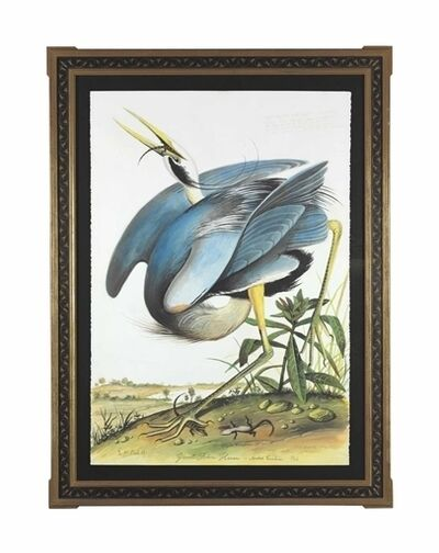 Walton Ford, 'Great Blue Heron'