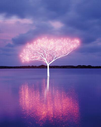 Lee Jeonglok, 'Tree of Life 5-4-8', 2013
