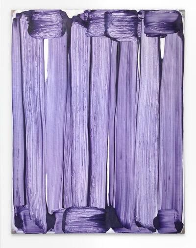 Robert Janitz, 'The Merry Widow is an Operetta', 2016