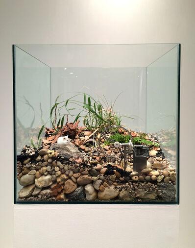 Martin Roth, 'Untitled (Swan Lake)', 2014
