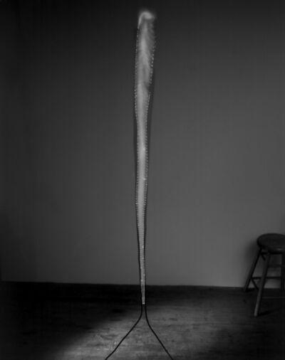 David Goldes, 'Jacob's ladder', 2010