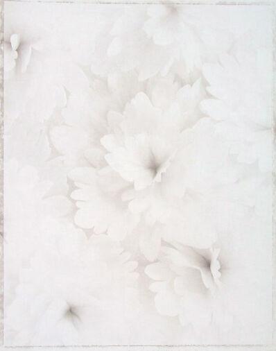 Ron van Dongen, 'Begonia t. 'Gala' (WOW 055)', 2001