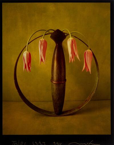 Masatomo Kuriya, 'Tulips', 1997