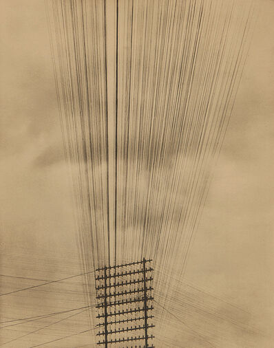 Tina Modotti, 'Telephone Wires, Mexico', 1925