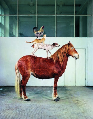 Katarzyna Kozyra, 'Pyramid of Animals', 1993/2019