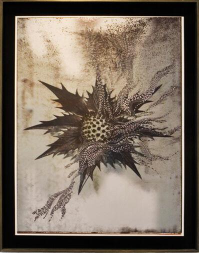 Sabin Aell, 'Moonwalk Mother Series 1.2', 2009