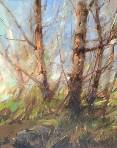 Vahe Yeremyan, 'Birches ', 2017
