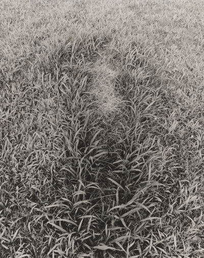 Ana Mendieta, 'Untitled, from the series Silueta Works in Iowa', 1978