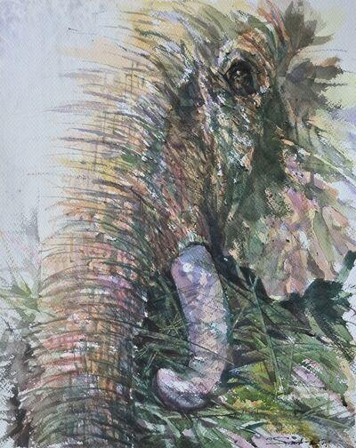 Sawan Tantiwan, 'Kuiburi Elephant Reserve VI', 2020