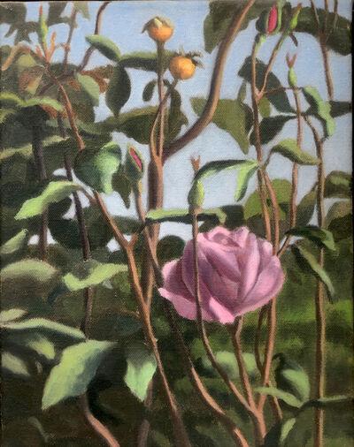 Alex Tubis, 'Rose', 2011