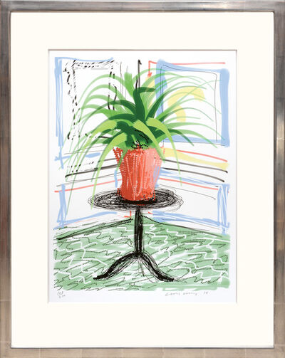 David Hockney, 'A Bigger Book with Untitled 468 [Pot Plant].', 2016