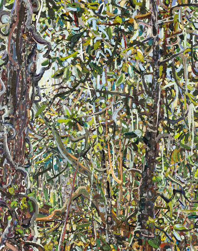 Lilian Garcia-Roig, 'Hyperbolic Nature: North Florida Woods', 2018
