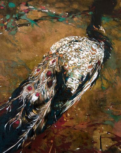 Ayline Olukman, 'Peacock', 2017