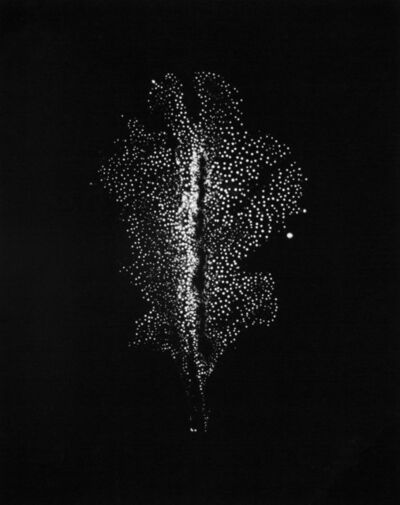 "Wataru Yamamoto, 'A Chrysanth Leaf 8, from the series ""Leaf of Electric Light""', 2012"