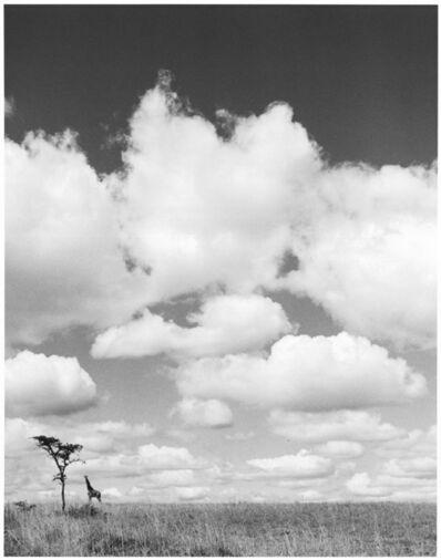 Hector Acebes, 'Tanzania', 1953