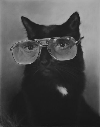 Eric Yahnker, '4-Eyed Cat', 2015