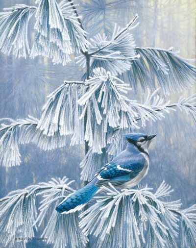 Robert Bateman, 'Frosty Morning -Blue Jay', 1982