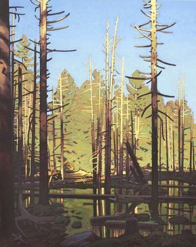 Clayton Anderson, 'Cedar Pond'