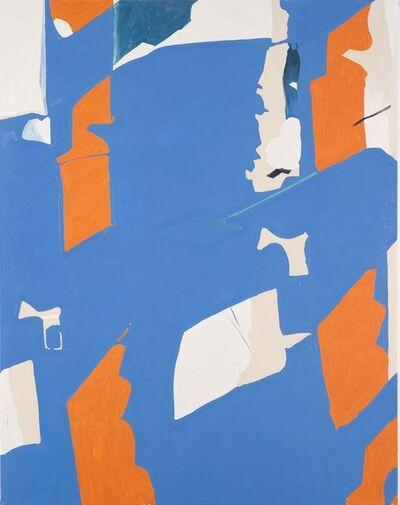 Koen van den Broek, 'Flock #2', 2013