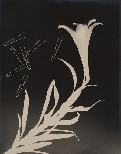 Gyorgy Kepes, 'Untitled (Lily and Hairpins)', 1938