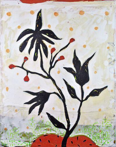 John Randall Nelson, 'Ebony Sweet Bean', 2020