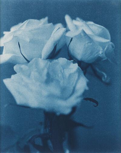John Dugdale, 'Three White Roses', 1997