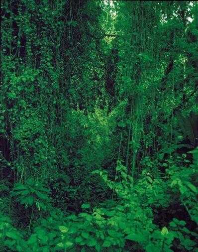 Garth Meyer, 'State of Amazonas Manaus, 3.06698*S 60.0130*W', 2018