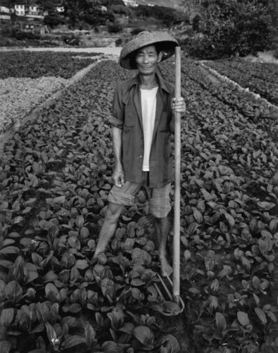 Robin Moyer, 'Vegetable Farmer', 1978