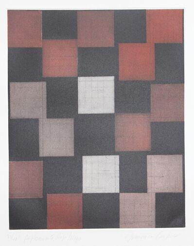 Francisco Castro Leñero, 'Tableros de luz y sombra ', 2009