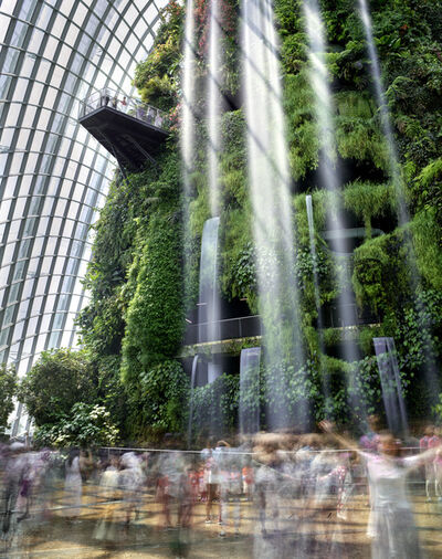 Matthew Pillsbury, 'Cloud Forest, Gardens by the Bay, Singapore', 2019