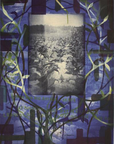 Radcliffe Bailey, 'Tobacco Blues', 2000