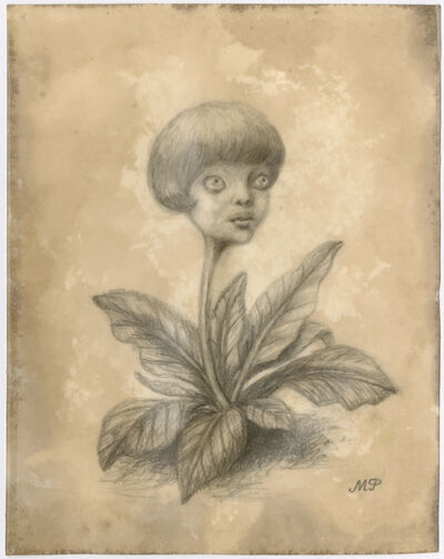 Marion Peck, 'young plant', 2020