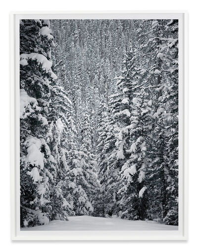 Stephen Shore, 'Hyalite Canyon, Gallatin County, Montana, December 26, 2017', 2017