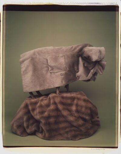 William Wegman, 'Shar Pei ', 1990