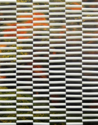Marjolijn De Wit, 'Evidence of their existence #29', 2013
