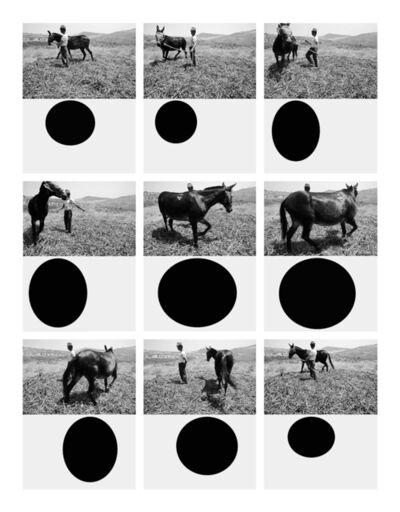 Mario Cresci, 'Geometria naturalis, Tricarico 1975 - Bergamo 2011', 2016