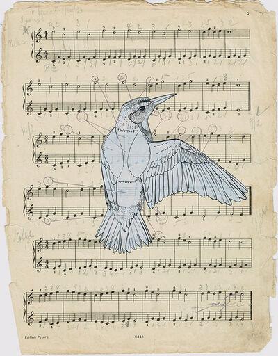 Axel Rios, 'Bird'