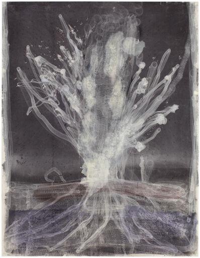 Heidi Lampenius, 'Geysir', 2016