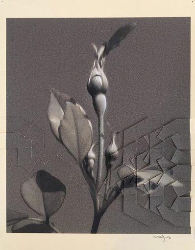 Rusty Scruby, 'Rosebud', 2006