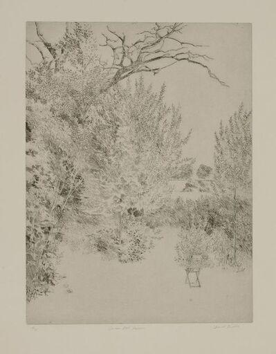 David Tindle, 'Garden East Haddon'