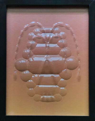 Amaya Bouquet, 'Trilobites'